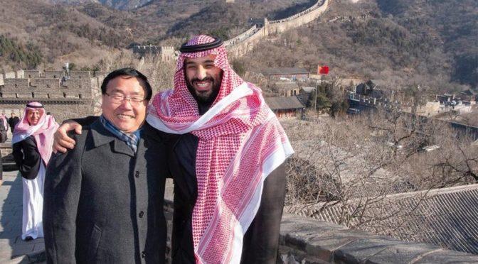 Наследный принц стоит на великой китайской стене и знакомится с её особенностями