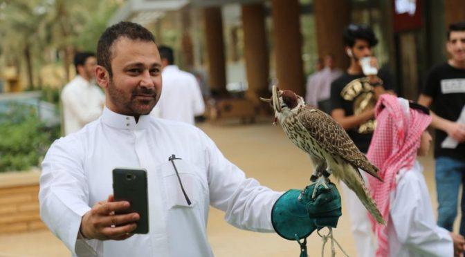 Мероприятия выставки соколов привлекают посетителей в дипломатическом квартале г.Эр-Рияда
