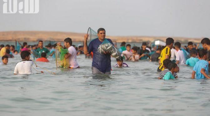 Жители о.Фарасан в конце ночи пожинают дары моря: «День аль-Харид» — их удел