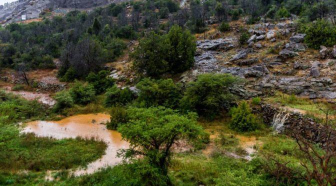 Дожди побуждают жителей Баха выезжать на на отдых  природу  и в леса