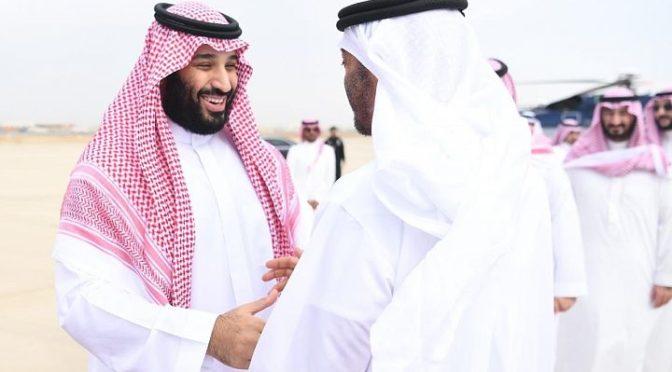 Его Высочество наследный принц встретился с шейхом Мухаммадом бин Заидом