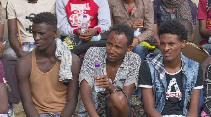 ВС Саудии освободили 81 африканца, захваченных торговцами людьми из числа хусиев