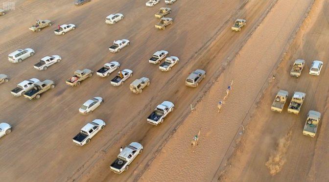 Завершились верблюжьи бега на фестивале «Ночь Хидадж» в Тайме