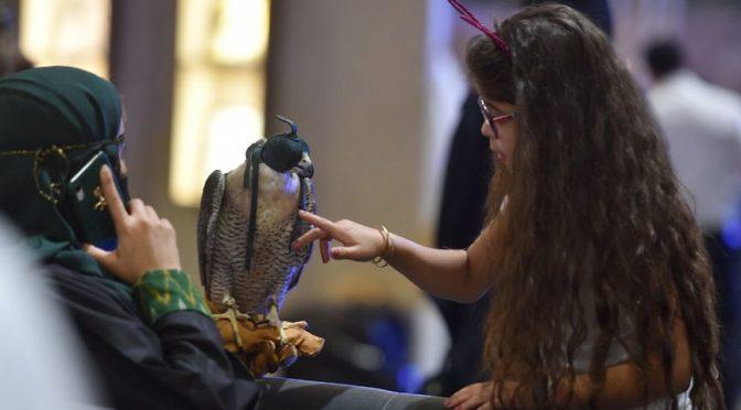 Большой приток посетителей на выставке «Саудийские соколы»