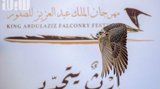 Победители фестиваля соколов им. короля Абдель Азиза