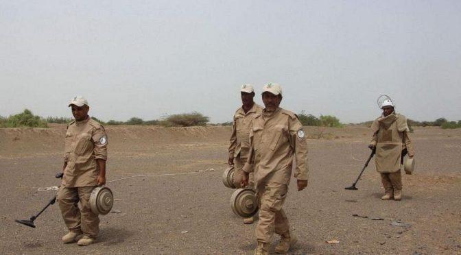 Армия Йемена: хусииты распространяют вести о вымышленных победах на фронте в Нихм
