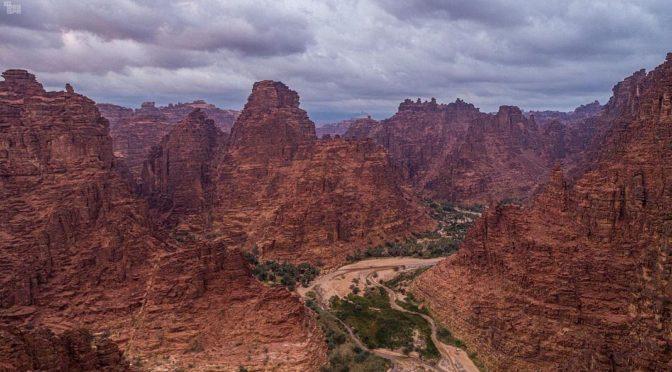 Фотокорреспонденты SPA запечатлели сцены красоты природы Вади Эд-Диса