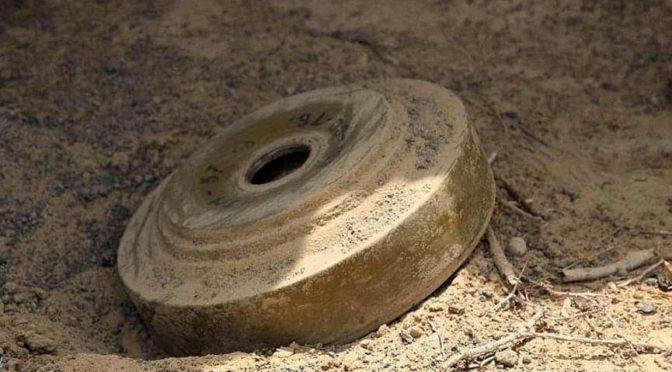 В рамках проекта «Масам» в течение первой недели июня обезврежено 852 мины