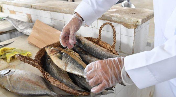 Муниципалитет провинции Джазан продолжает усиление мер предостороженности на центральном рыбном рынке