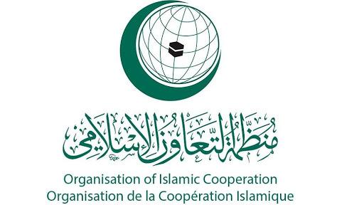 ОИС приняло участие в 40-й сессии Комитета наблюдения по осуществлению Соглашения о примирении в Мали