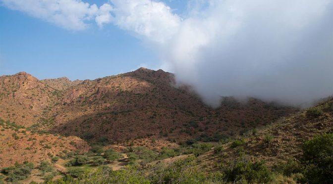 Облака и туман окружают вершины Шифа и Хада в Таифе