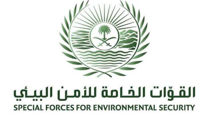 Специальные силы экологической безопасности конфисковали 70 тонн дров местного производства в г.Эр-Рияд