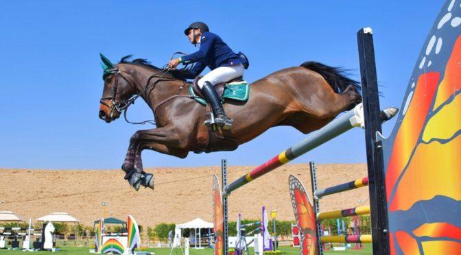 Объединённый чемпионат по конному спорту