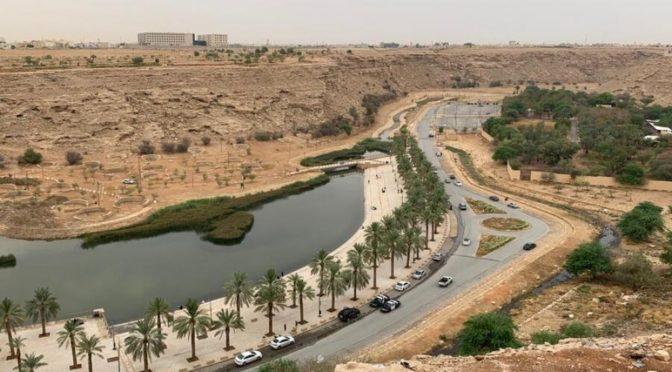 Дожди возвращаются в Эр-Рияд