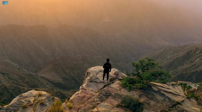 Асир: природа саудийского лета